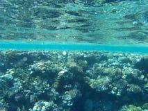 Onderwater oceaanertsader als achtergrond royalty-vrije stock fotografie