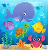 Onderwater oceaanfaunathema 7 Stock Afbeeldingen