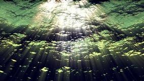 Onderwater oceaangolvenrimpeling en stroom - Water FX0311 HD stock footage