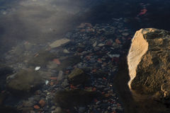 Onderwater rots Stock Afbeeldingen