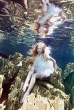 Onderwater sprookje Royalty-vrije Stock Afbeeldingen