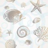 Onderwater tropische fauna Royalty-vrije Stock Foto