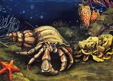 Onderwater wereld 2 Stock Foto