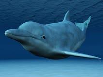 Onderwater zwemmen van de dolfijn. Stock Afbeeldingen