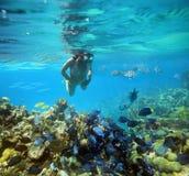 Onderwateravontuur op vrouwenkoraalrif Stock Fotografie