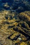 Onderwaterbezinning van zand, rotsen en stenen onderaan Royalty-vrije Stock Afbeelding