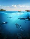 Onderwaterdeel Royalty-vrije Stock Afbeeldingen