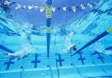 Onderwatermening van professionele deelnemers die in pool rennen Stock Foto