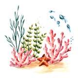 Onderwatersamenstelling met koraal, algen en vissen Waterverfhand getrokken die illustratie op witte achtergrond wordt geïsoleerd stock illustratie