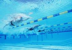 Onderwaterschot van vier mannelijke atleten die in zwembad concurreren Royalty-vrije Stock Foto