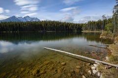 Onderwaterstenen en Rocky Mountains dichtbij Herbert Lake royalty-vrije stock afbeeldingen