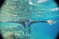 Onderwaterwereld van vissen stock afbeeldingen