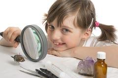 Onderwijsbiologie voor kinderen Stock Foto