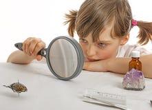Onderwijsbiologie voor kinderen Stock Afbeeldingen