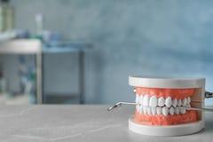 Onderwijsmodel van mondholte en tandartsspiegel op lijst binnen royalty-vrije stock afbeelding