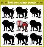 Onderwijsspelen voor kinderen, beeldverhaal voor kinderen van peuterleeftijd Vind de juiste schaduw voor baviaan van Savanne Vect vector illustratie