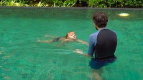 Onderwijst de mensen zwemmende instructeur weinig jongen die in de pool zwemmen stock video