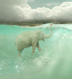 Onderzeese olifant stock illustratie