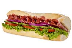 Onderzeese sandwich Stock Fotografie