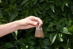 Onderzoeker die de waterkwaliteit testen Royalty-vrije Stock Foto
