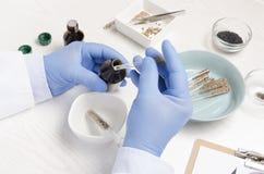 Onderzoeker het schrijven testresultaten na het analazing van de normen van zaden Leeg document op klembord en ander laboratorium stock foto
