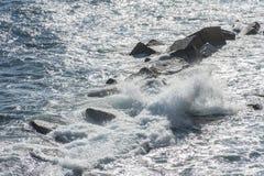 Ondes côtières à Syracuse Photo libre de droits