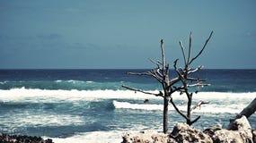Ondes dans l'océan Image stock
