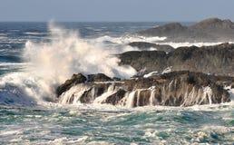 Ondes de l'océan pacifique Photo libre de droits