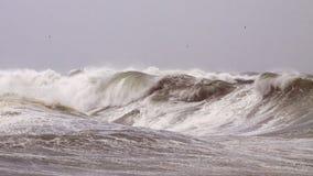 Ondes orageuses photos libres de droits