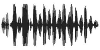 Ondes sonores enregistrant la parole, reverb, synthétiseur de parole d'icône de vecteur, ondes acoustiques de spectrogramme Image libre de droits