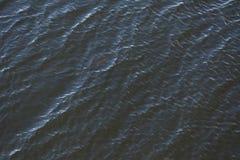 Ondes sur l'eau Photos stock