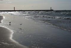 Ondes sur la plage. Image stock