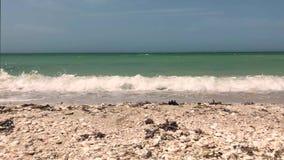 Ondes sur la plage banque de vidéos