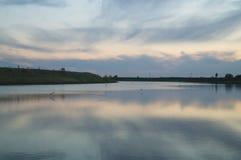 Ondiep die meer met waterplanten wordt overwoekerd Stock Foto's
