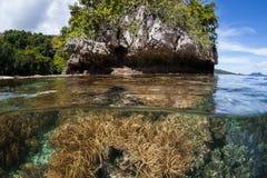 Ondiep, Gezond Coral Reef en Rotseiland in Raja Ampat stock fotografie