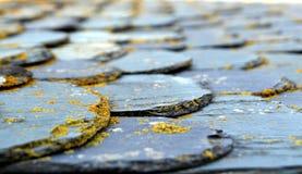 Ondiep nadrukschot van leitegels op een vlak die dak in lich wordt behandeld Stock Afbeeldingen