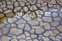 Ondiep water Royalty-vrije Stock Foto's