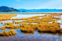 Ondiepe overzees die aan moeras door het overzees verbindt stock afbeelding