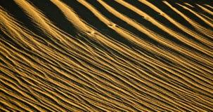 Ondinhas da areia fotos de stock royalty free