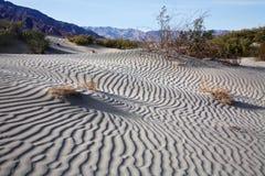 Ondinhas da areia, Death Valley fotografia de stock