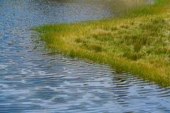 Ondinhas do lago Fotografia de Stock