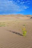 Ondinhas em dunas e em montanhas de areia Fotografia de Stock