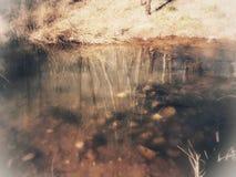 Ondinhas na cama de rio Fotografia de Stock Royalty Free