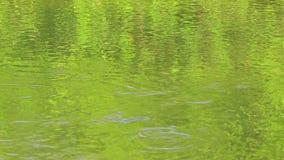 Ondinhas na superfície de um rio ou de um lago aberto, em reflexões verdes e em círculos na água filme