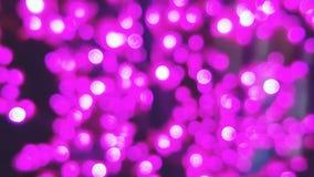 Onduidelijk beeld bokeh van purper en roze licht voor achtergrond Royalty-vrije Stock Foto