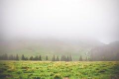 Onduidelijk beeldscène die van weiden boven het bergbos na de regenmist, de magische charme van Bucegi-berg Roemenië geven stock foto