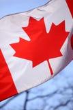 Ondulação canadense do flasg Imagem de Stock