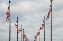 Ondulação das bandeiras americanas Fotos de Stock