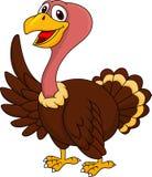 Ondulação dos desenhos animados de Turquia Fotografia de Stock