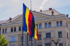 Ondulação europeia das bandeiras fotografia de stock royalty free